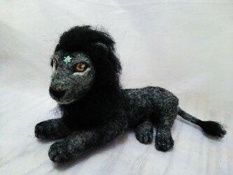 獅子座の画像