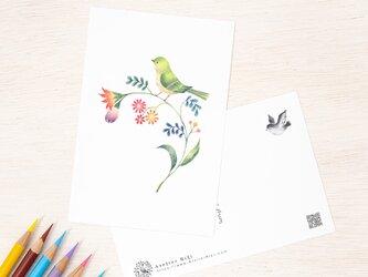 """4枚セット。絵本のような。ポストカード """"緑の小鳥と草花"""" PC-38の画像"""