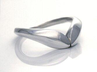 若葉のリングの画像