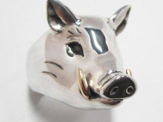 猪(いのしし)RINGの画像