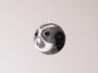 Owlball -メガネフクロウ -の画像