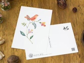 """4枚セット。絵本のような。ポストカード """"橙色の小鳥と草花"""" PC-53の画像"""