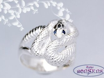 天然ルビー/サファイア Silver925 蛇 スネーク リング サイズ#7~#21の画像
