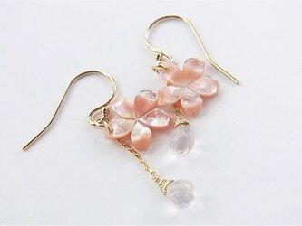 14kgf ピンクシェル桜のピアスの画像