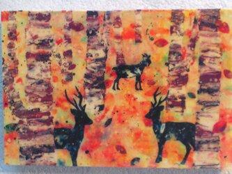 秋の森(転写)の画像