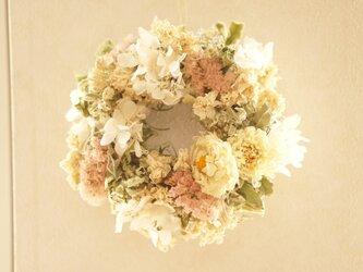 spring wreath  ダリアの画像