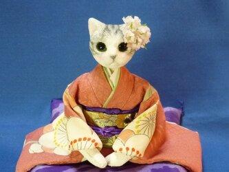 k様オーダー品 ひな祭り待ちわび猫のお嬢さん の画像