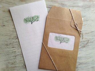 緑の木 レターセットの画像