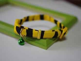 猫 虎柄首輪(緑)の画像