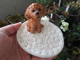 動物・ボタン模様皿<大>(トイプードル)の画像