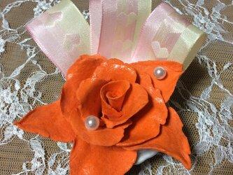 オレンジバラ3の画像