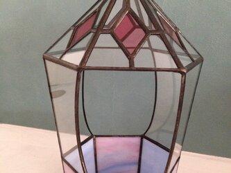 テラリウム(yoshiko yano)の画像