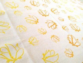 家紋手ぬぐい「松葉上羽蝶(まつばあげはちょう)散らし」の画像