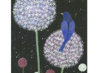 選べるポストカード(4枚)NO.10「アリアム・プラネット」の画像