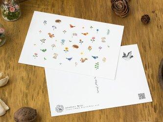 """4枚セット。絵本のような。ポストカード """"動物たちと花と草"""" PC-32の画像"""