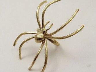 「蜘蛛」リングの画像