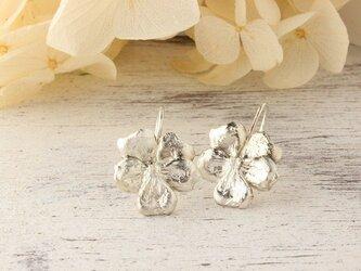 silver 春花 すみれの花 ピアス (シルバー)の画像