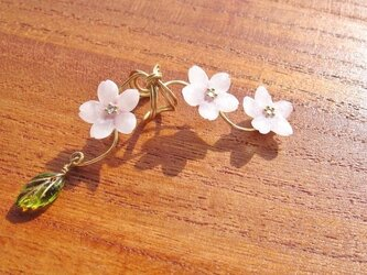 桜のイヤーカフの画像