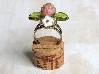 木苺の指輪 6の画像