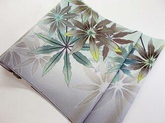 袋帯(アルボリコラ・観葉植物)の画像