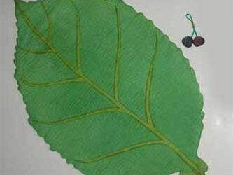 さくら葉(ランチョンマット)の画像