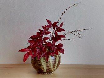 花瓶の画像