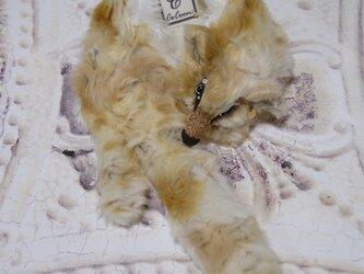 Fox muffler/Size:L#Vanilla latte/Eye:Glasseyeの画像