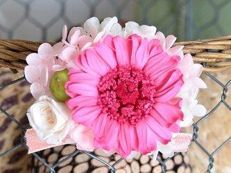 【ホワイトピンク】 プリザーブドフラワー コサージュ ガーベラ  発表会 結婚式 入学式 ヘッドドレス 七五三の画像