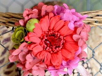 【レッドピンク】 プリザーブドフラワー コサージュ ガーベラ アジサイ  発表会 結婚式 入学式 ヘッドドレス 還暦 七五三の画像