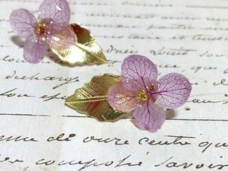 *ラベンダー*紫陽花とゴールドリーフピアスの画像