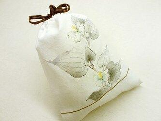 きんちゃく(ドクダミの白い花)の画像