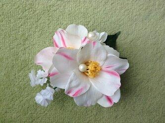 白椿のコサージュの画像