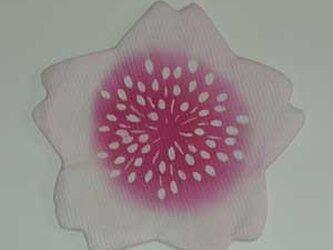 さくら花(コースター)の画像