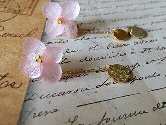 *さくら*紫陽花とゴールドプレートピアスの画像