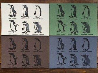 ペンギン6種ポストカードの画像