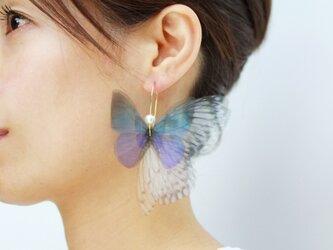 クリスマス Lapis Lazuli Fairy Dream ピアス(イヤリングへ変更可)の画像