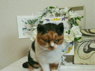 羊毛フェルトの三毛猫の画像