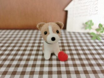 Y様ご予約品 子犬のコーギー☆の画像