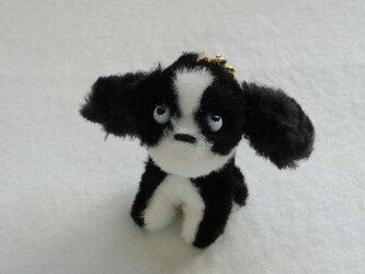 イヌのstella(イヤホンジャック・キーリング)2の画像
