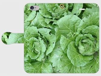 【送料無料】iPhone6/6s手帳型スマホケース 白菜の画像