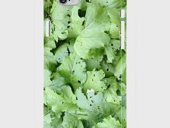 【送料無料】iPhone6/6sスマホケース 虫食い野菜の画像