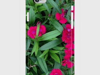 【送料無料】iPhone6/6sスマホケース なでしこの画像