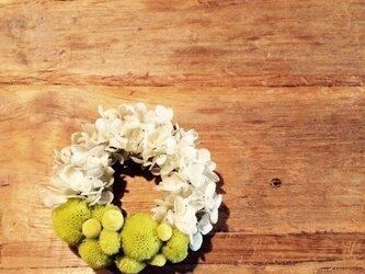 light green wreatheの画像