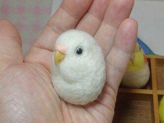 セキセイインコ ピュアホワイト  羊毛フェルト 小鳥マカロン(?)選べる2タイプ(マグネットまたはブローチ)【受注製作】の画像