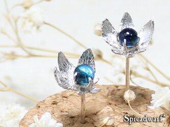Fused glass flower pierce 'moritsuyu'の画像