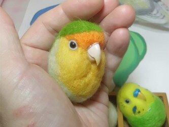 コザクラインコ オレンジフェイス  羊毛フェルト 小鳥マカロン(?)選べる2タイプ(マグネットまたはブローチ)【受注製作】の画像