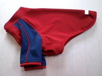 犬服 [受注生産]:大型犬用ラグランTシャツ(紺&赤)の画像