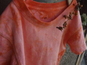 草木染めTシャツ~akane-iro~110の画像