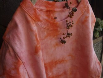 草木染めTシャツ~akane-iro~120の画像