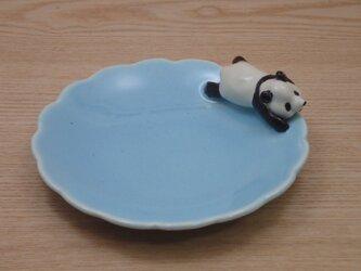 水青爆睡大熊猫輪花小皿−Iの画像